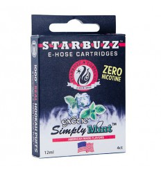 Starbuzz E-hose cartridges Simply Mint, 1ks
